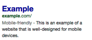 Google Search Friendly Tag